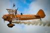 Akrobatik på vingar. Foto Hans J 3.6.2012.